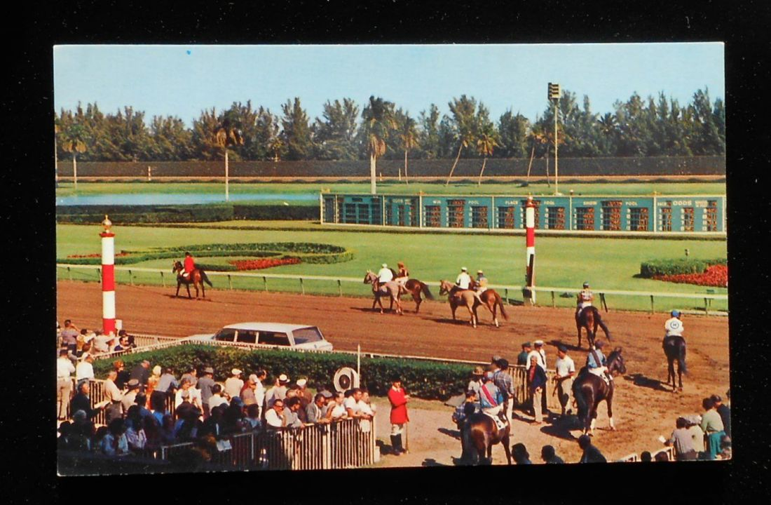 Hialea racetrack 1960s