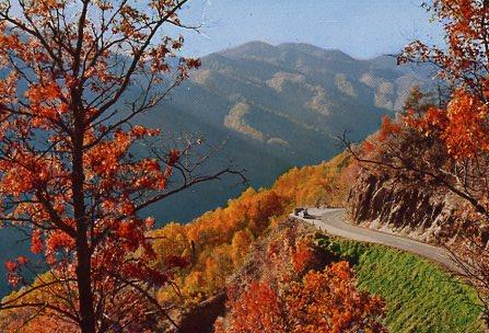 1965 03 21 postcard caption An Autumn scene on Newfound Gap Highway through the Great Smoky Mountains National Park.jpg