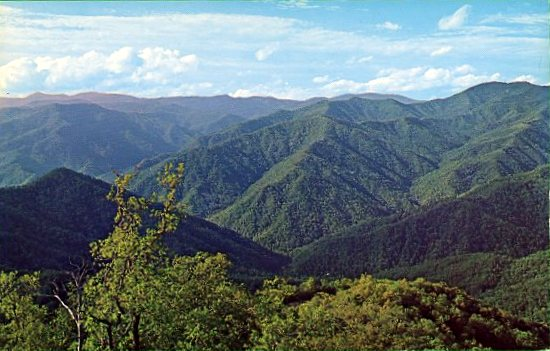 1965 03 21 postcard caption Panoramic view of the Great Smoky Mountains as seen from Barnetts Knob Fire Tower