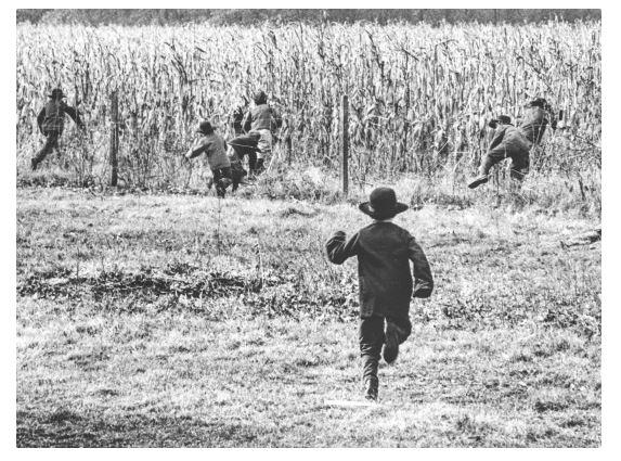 Amish child running into corn