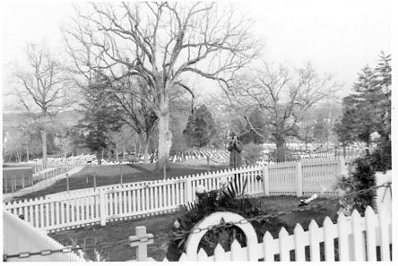 temporary grave of JFK Tony
