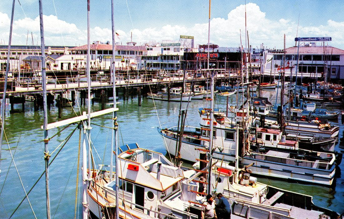 P52 FISHERMAN'S WHARF - is a must for every visitor to San Francisco California